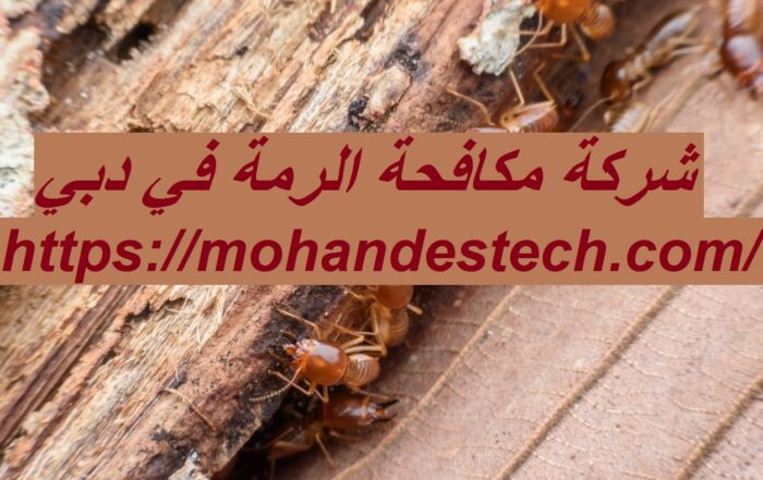 شركة مكافحة الرمة في دبي