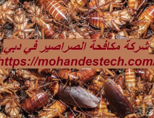 شركة مكافحة الصراصير في دبي |0561484426| لمكافحة الحشرات