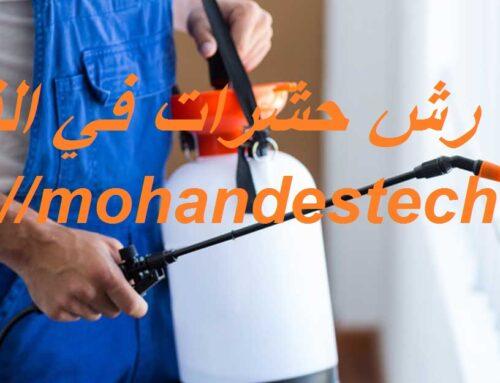 شركة رش حشرات في الفجيرة |0561484426| مكافحة حشرات