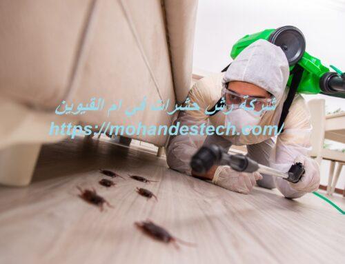 شركة رش حشرات في ام القيوين |0561484426| ابادة وتعقيم