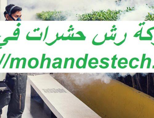 شركة رش حشرات في دبي |0561484426| رش الحشرات