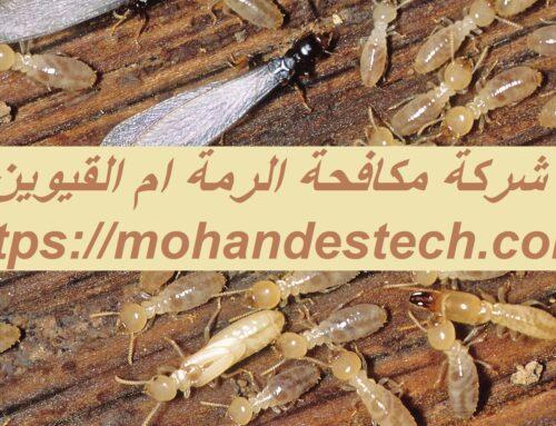 شركة مكافحة الرمة ام القيوين |0561484426| ابادة حشرات