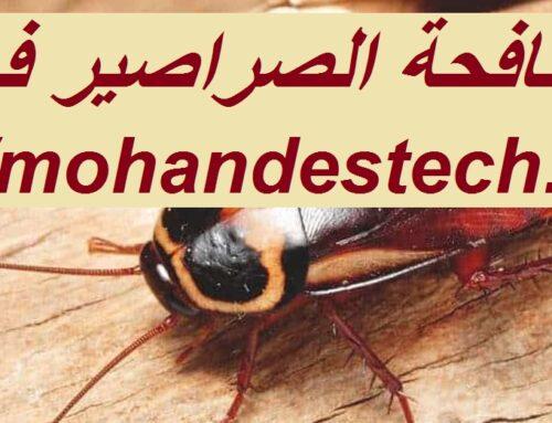 شركة مكافحة الصراصير في الشارقة |0561484426| مبيدات امنة