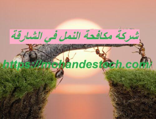 شركة مكافحة النمل في الشارقة |0561484426| ابادة تامة