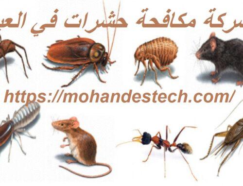شركة مكافحة حشرات في العين |0561484426| رش الحشرات