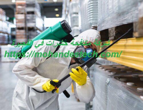 شركة مكافحة حشرات في الفجيرة |0561484426| ابادة الحشرات